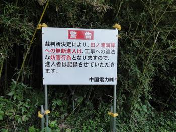 iwai011.jpg